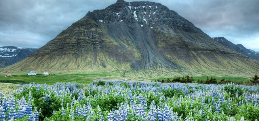 Преимущества и недостатки эмиграции в Исландию