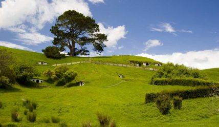 В поисках комфортной жизни или иммиграция в Новую Зеландию