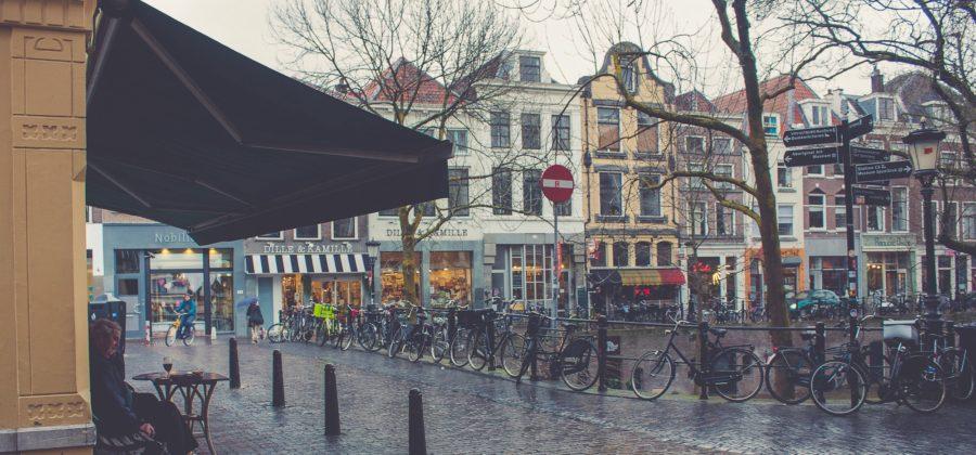 Возможно ли жить в Королевстве – шансы эмиграции в Нидерланды