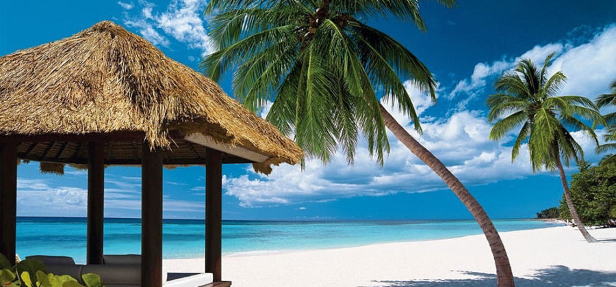 Пальмы, море, белые песчаные пляжи и не только — советы по эмиграции в Доминикану