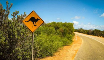 Есть ли жизнь в самой таинственной части страны — Западной Австралии?