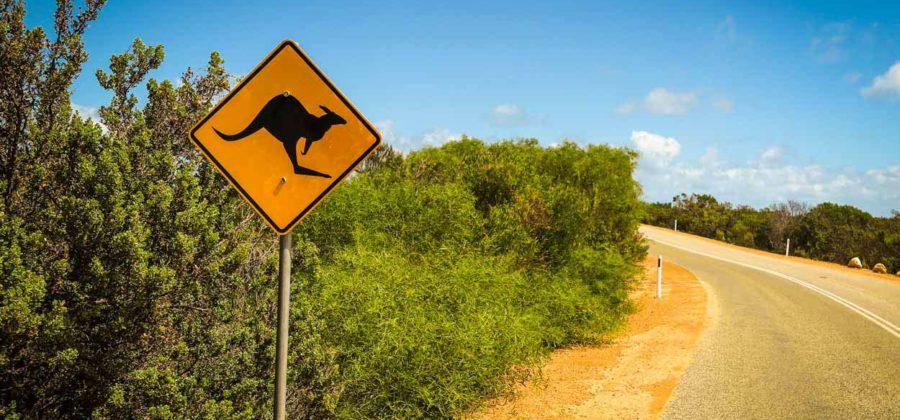 Есть ли жизнь в самой таинственной части страны – Западной Австралии?