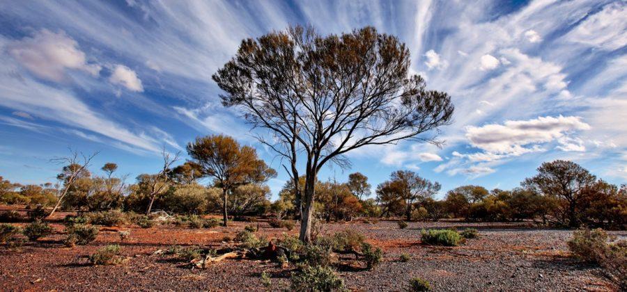 Пески против океана – особенности климата Австралии