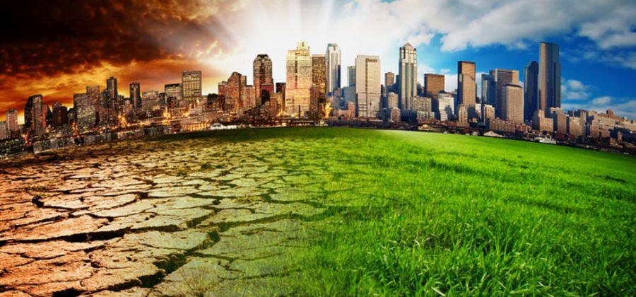 Что скрыто от людских глаз — экологические проблемы Австралии