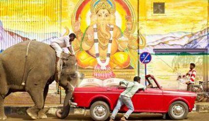 Самая необходимая и полезная информация о визе в Индию