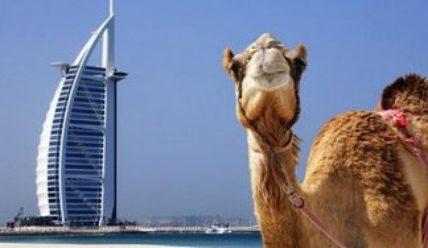 «Привет, Эмираты!» — как сделать визу в Дубай?