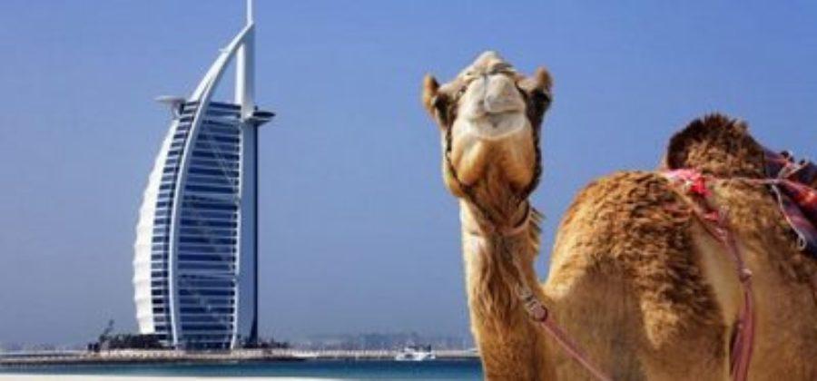 """""""Привет, Эмираты!"""" – как сделать визу в Дубай?"""