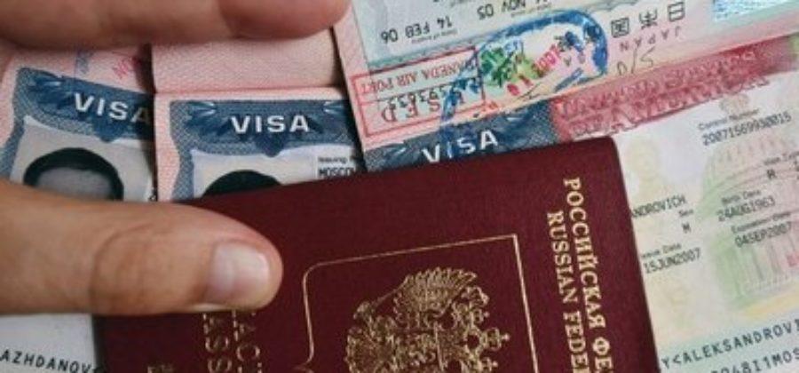 Где узнать номер шенгенской визы?