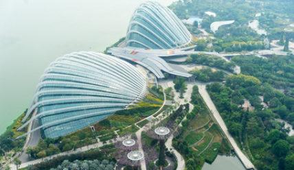 Есть ли способ попасть в Сингапур без визы?